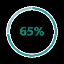 Microsoft Dynamics 365 for Customer Insights 13
